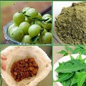 Use these Herbs for Hair Growth