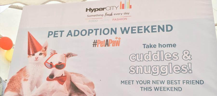 Pet Adoption Weekend at HyperCITY