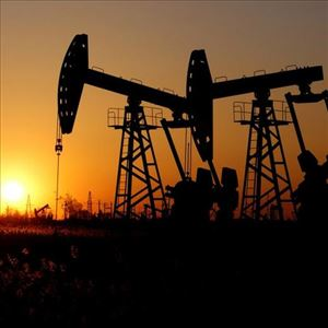Oil prices hovered just below 2019 highs by producer club OPEC