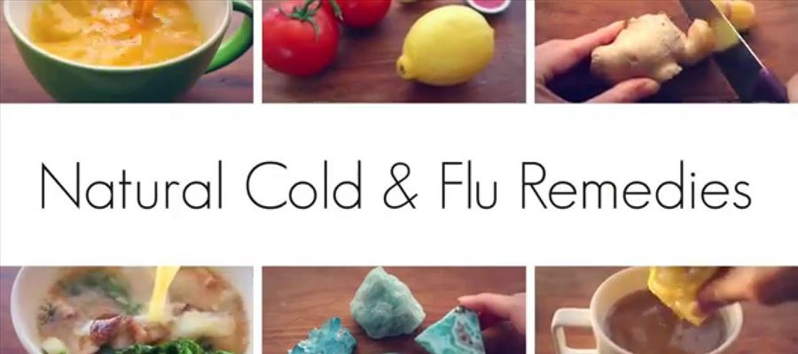 Some Foods that fight Cold and flu