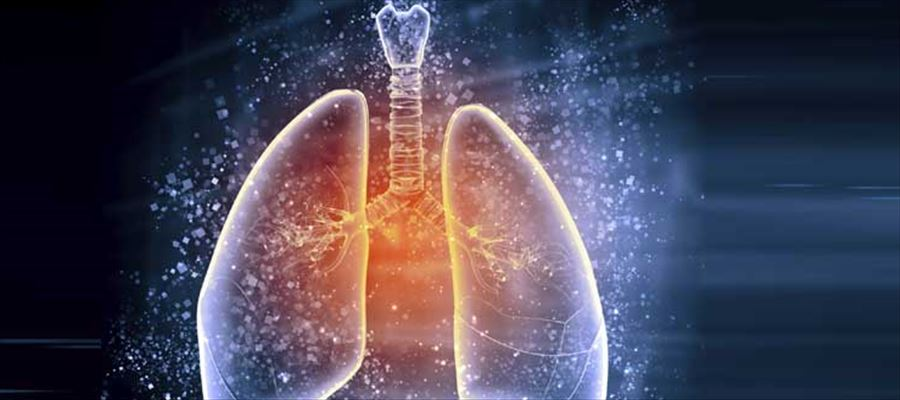 Protecting lungs from air pollution