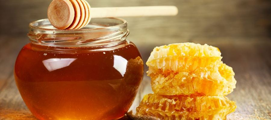 Healthy benefits of Nature's gifted ingredient Honey