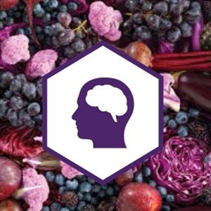 Amazing benefits of eating Purple Colored Vegetables