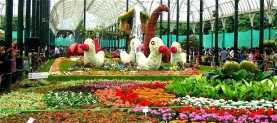 5 Points you should know about Lalbagh Flower Show