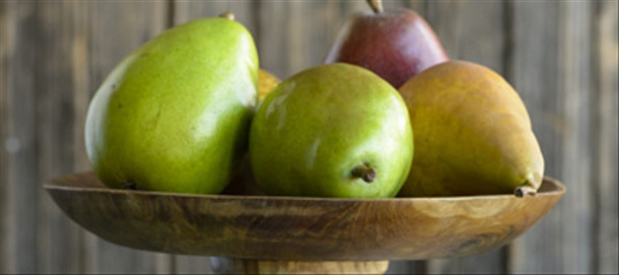 New Research Investigates Potential Probiotic Benefits of a Pear-Enriched Diet