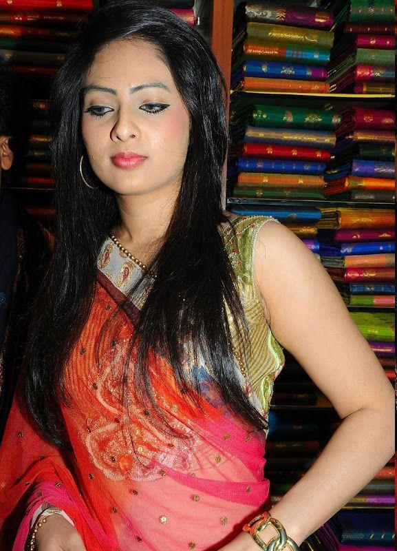 Nikesha Patel Hot In Cool Saree Photos