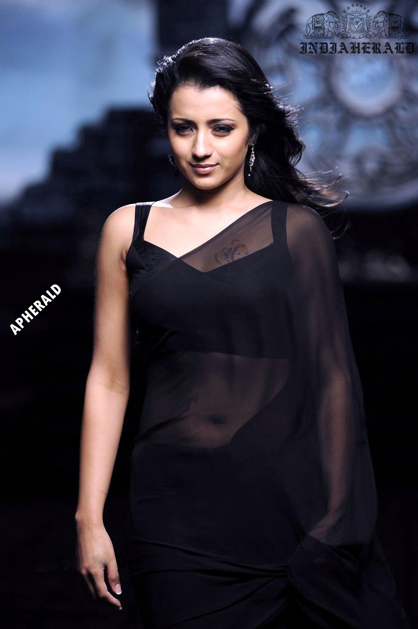 Trisha tempts our mood by exposing her navel and waist in Black transparent saree