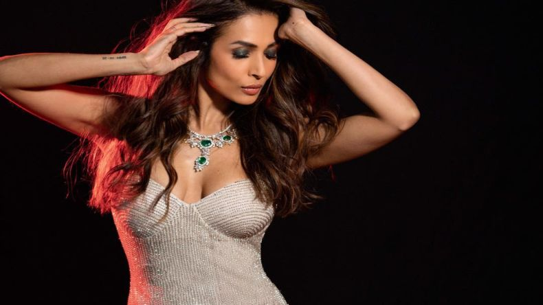 Malaika Arora New Hot Sexy Pictures