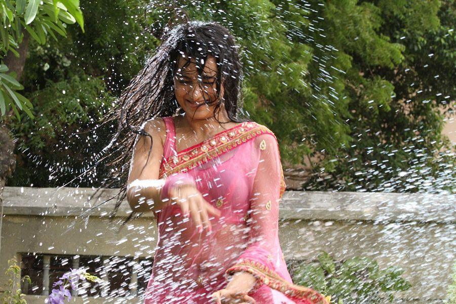 Trisha In Transparent Saree Pictures