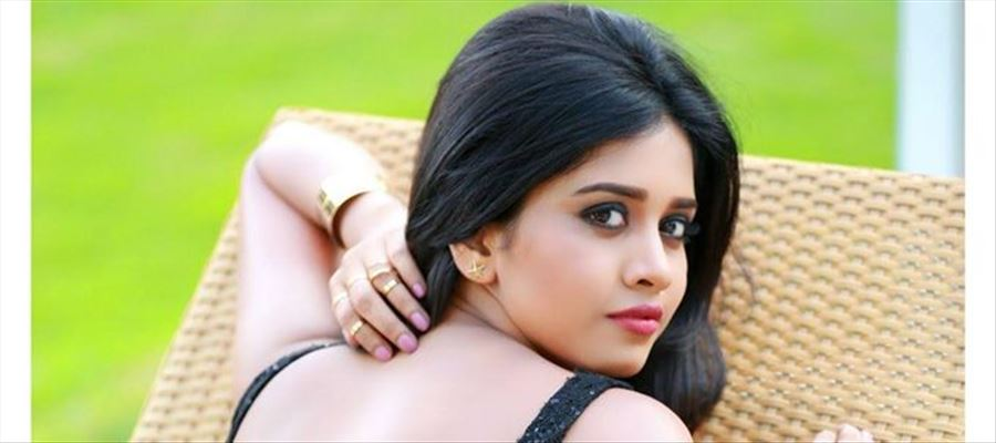 Actress Nabha Natesh Latest Photoshoot Stills
