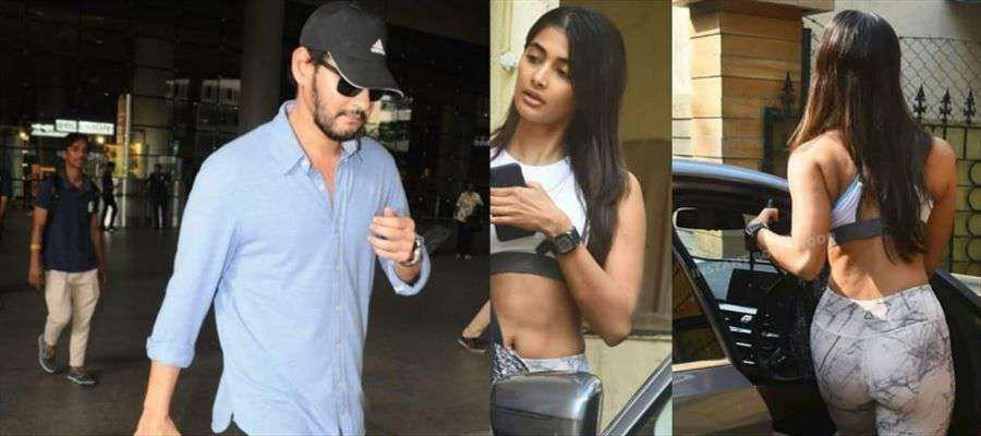 A Mass scene and a Romantic scene for Mahesh Babu and Pooja Hegde