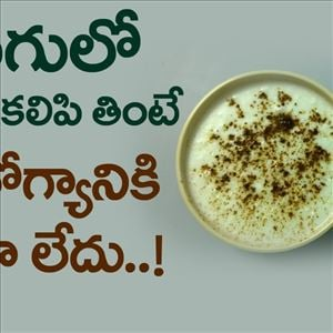 Amazing Benefits of Curd With Ginger | Best Health Tips in Telugu
