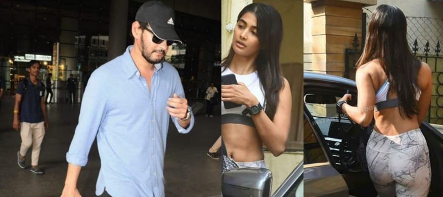 Prince and Pooja Hegde are back to roots after making romance in NYC