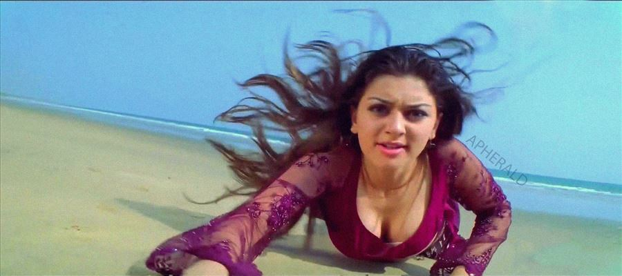 Hansika gets a lead actor's property