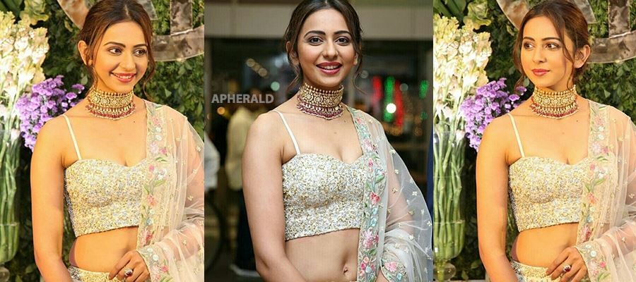 When a fan got tempted to touch Rakul Preet's waist curves during a public function - 10 Photos Inside