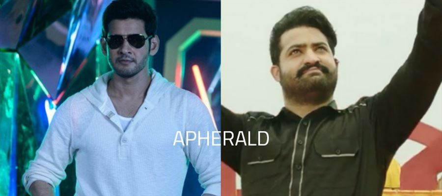 In the clash between SPYDER Vs JAI LAVA KUSA, the SURPRISE WINNER is going to be...