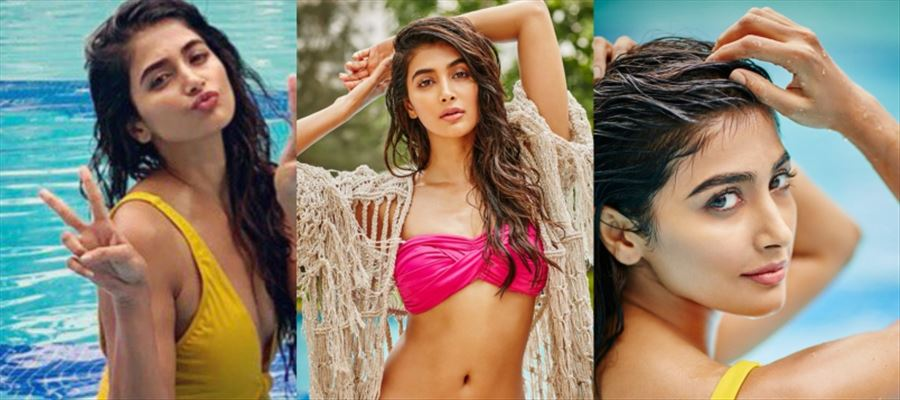 Not just 'Mahesh Babu', even 'THIS HERO' is going to love Pooja Hegde