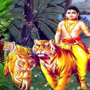 Pacha Pachani Chetu Song(Ayyappa Swamy Songs)
