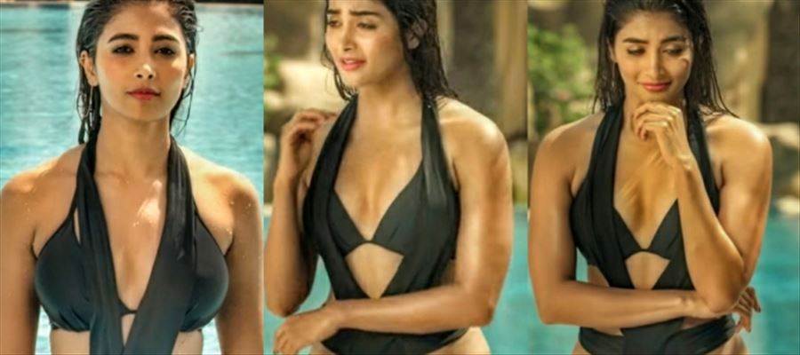 These 26 Hot Photos of Allu Arjun Girl in BIKINI Avatar is Totally Stare-Worthy and Drool-Worthy - View all Photos Inside