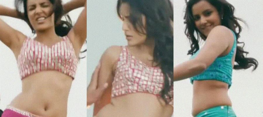 "Priya turns TOPLESS HOTTIE for a Malayalam movie - ""Topless Photo"" Inside"
