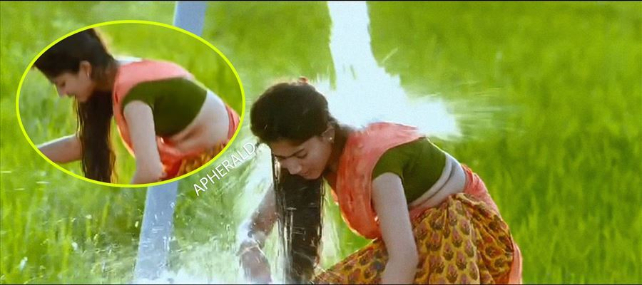 Sai Pallavi did a spicy scene?