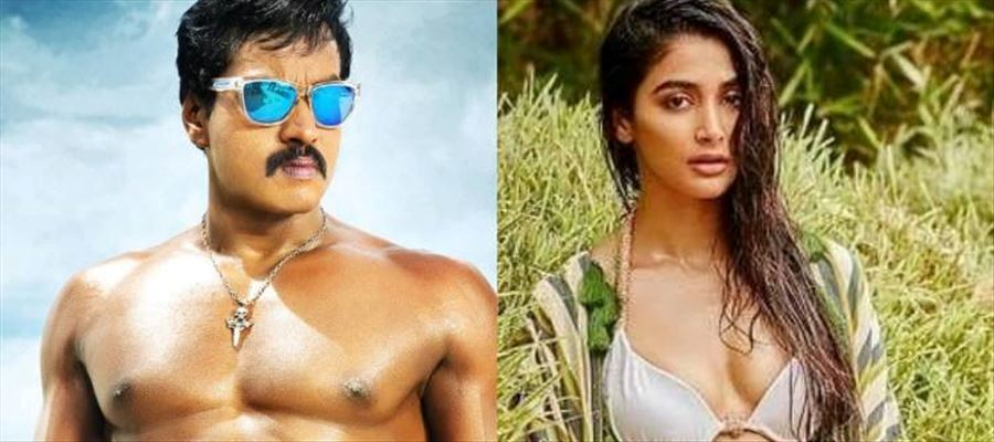 When Sunil drooled over Pooja Hegde...