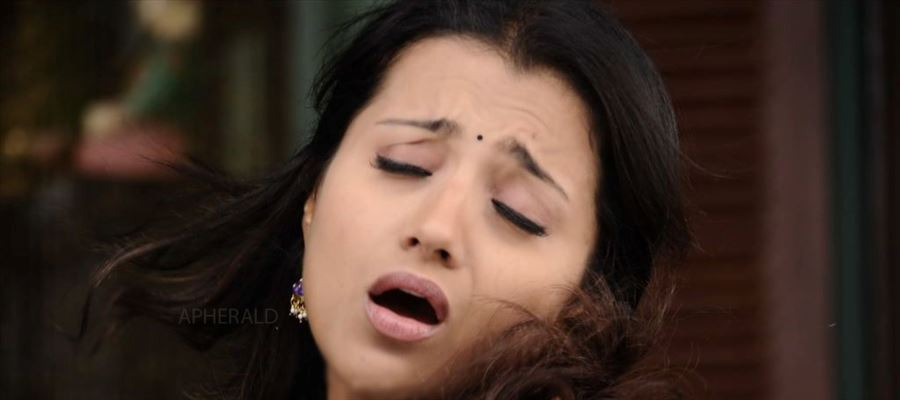 Aaah... Ouch... Trisha settles with 'Flop' Hero in the End...!!!