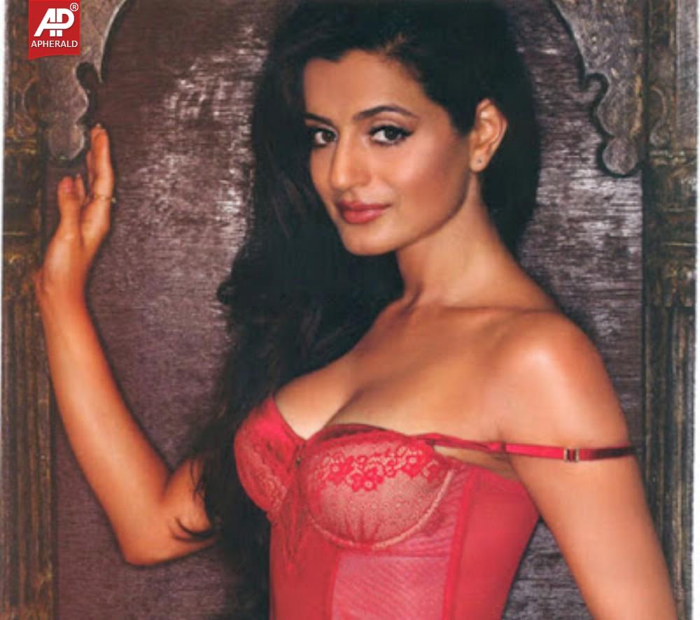 Ameesha Patel Hot Sexy Photos amisha patel hot navel images