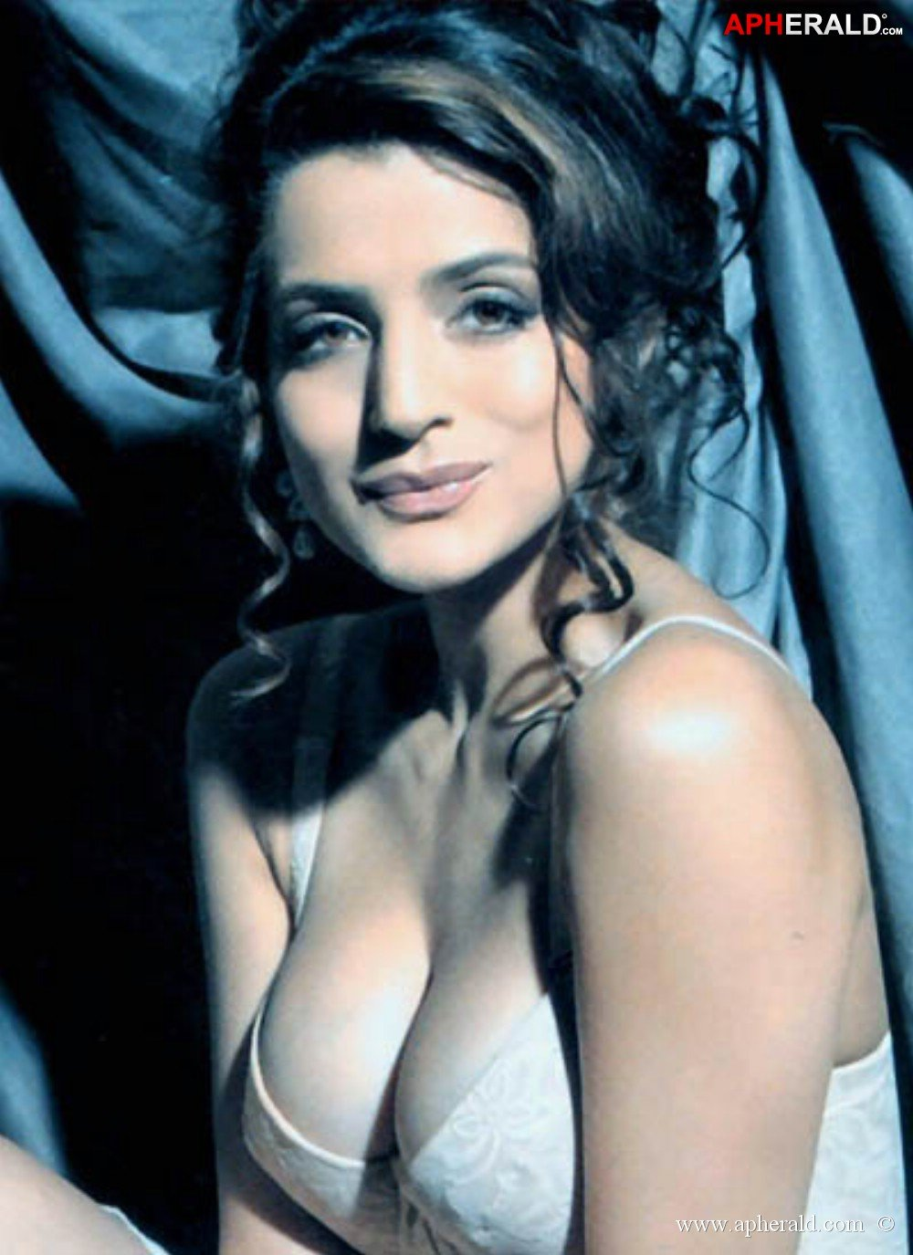 Sexy images of amisha patel