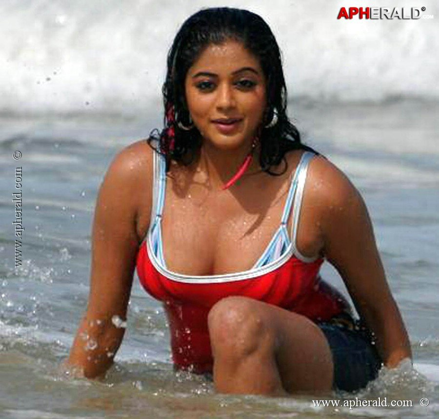 Priyamani hot and sexy photos
