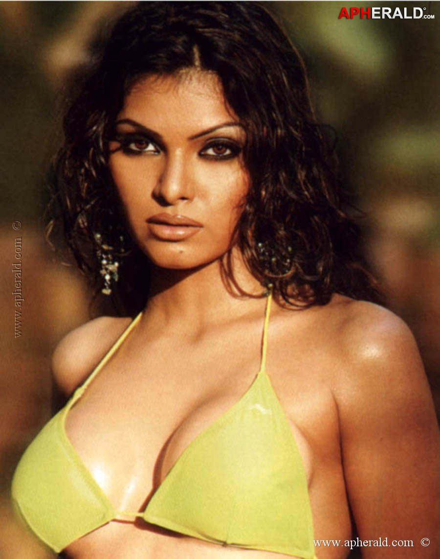 Sherlyn Chopra Hot Pics-4297