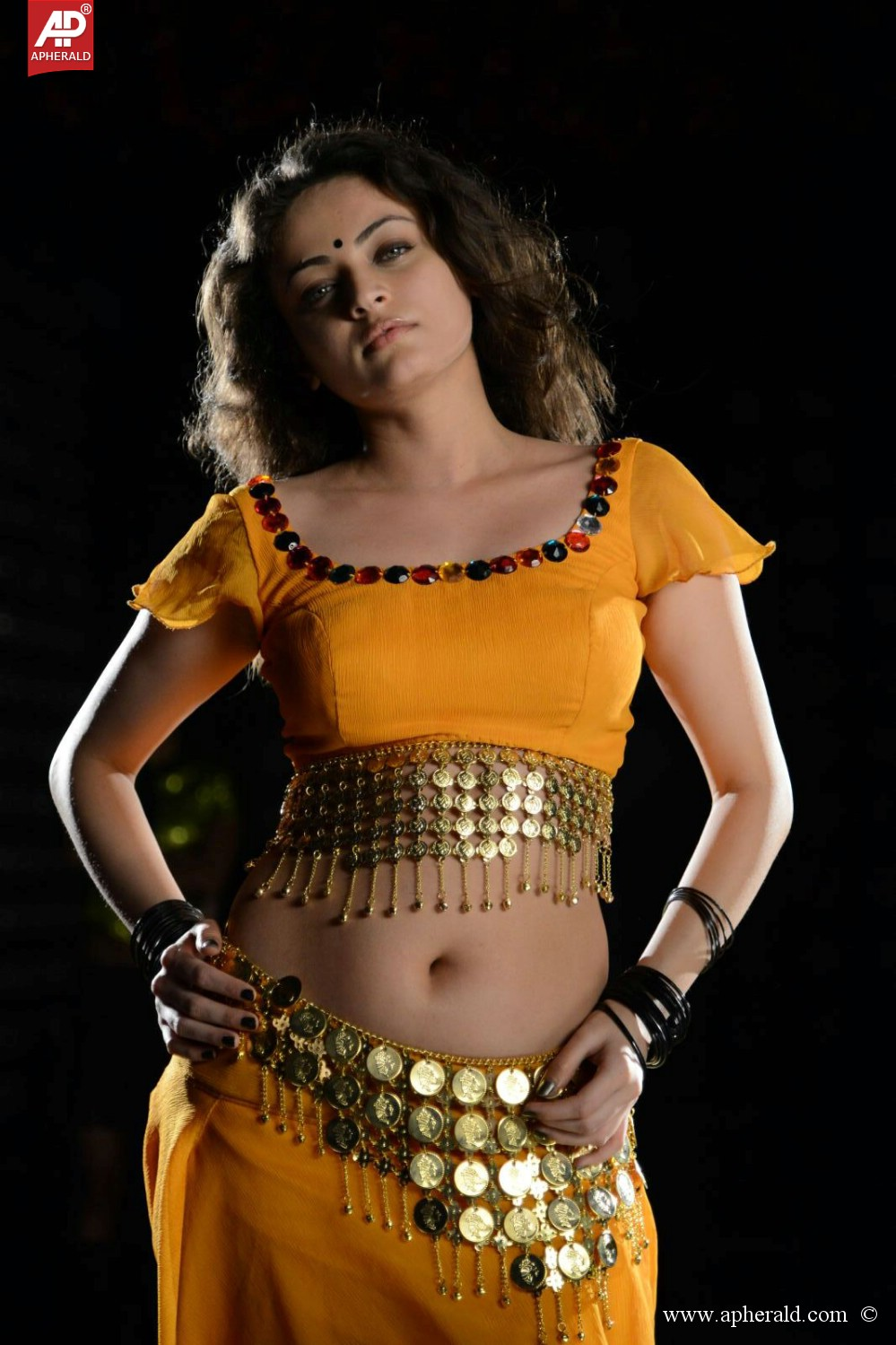 sneha ullal hot pictures