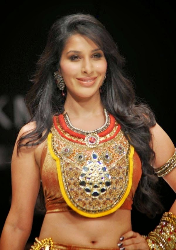 Hindi Actress Sophie Choudry Hot Photoshoot Stills | NETTV4U