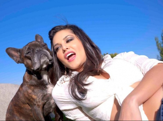 Sunny Leone With Dog Ultra Hd Wallpaper-6204