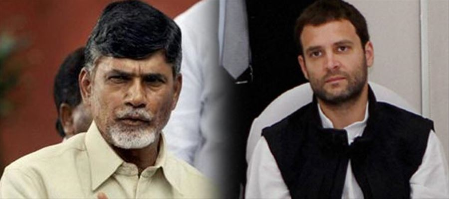 TDP is clear that it won't support Rahul Gandhi or Modi as PM