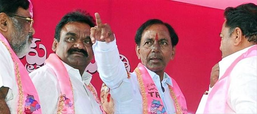Hyderabad all set to turn Pink ahead of plenary of ruling TRS