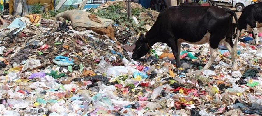 BBMP has once again mooted idea of garbage marshals