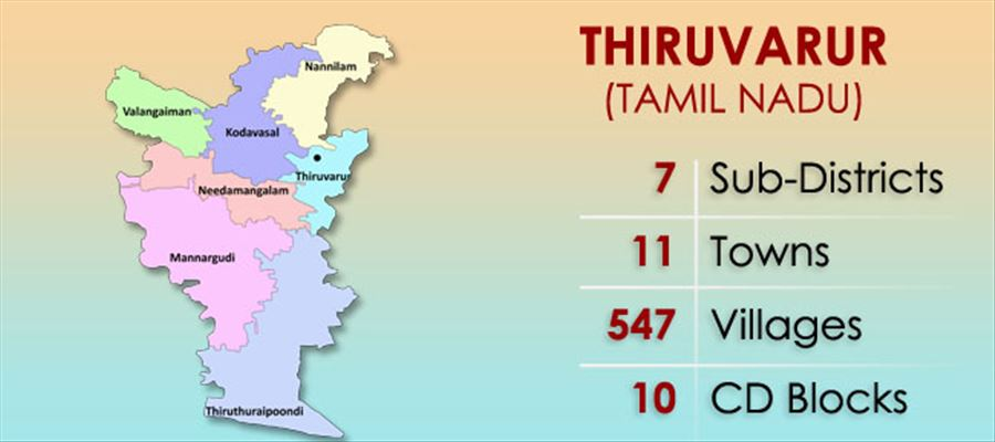 With Karunanidhi no more, Who is going to be the next candidate in Tiruvarur?