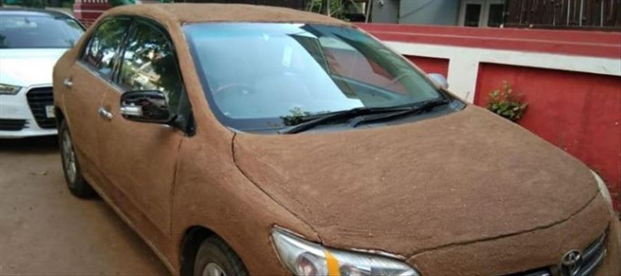 Ahmedabad man covers his car with COW DUNG to keep it cool...
