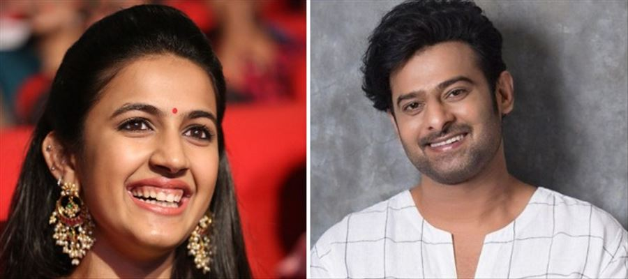 Is Niharika ready to marry Prabhas?
