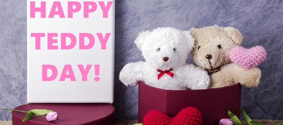 Teddy Day celebrated on February 10