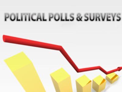 political surveys and their effect
