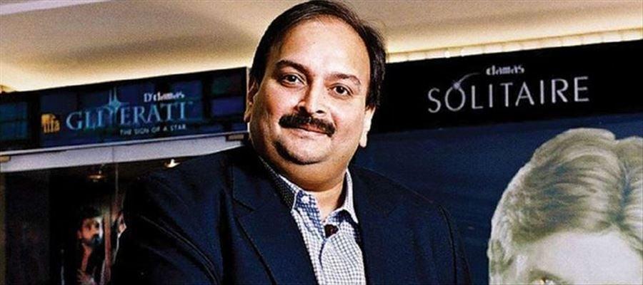 Interpol issued RCN to Mehul Choksi