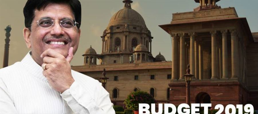 What did Experts say about Interim Budget 2019?